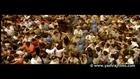 Dhunki - HD VideoSong - Mere Brother Ki Dulhan (2011)